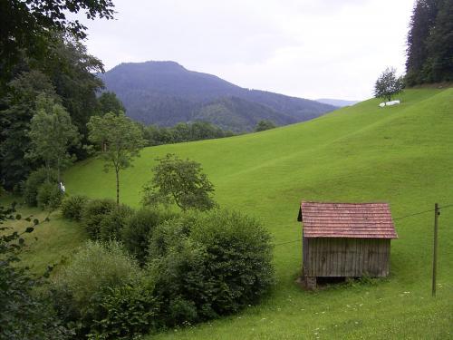 Wiesensteig-014